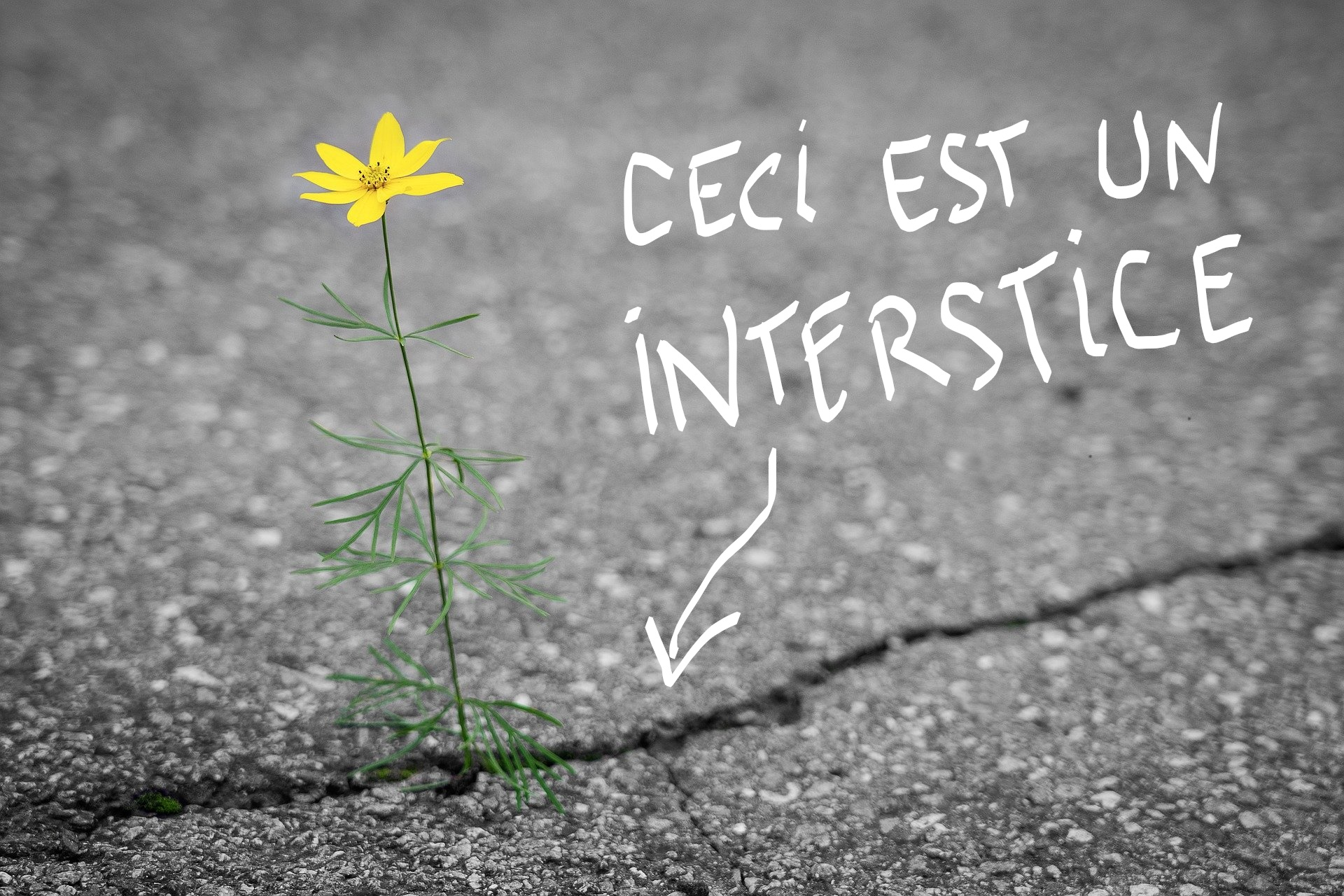 ceci_est_un_intersitice